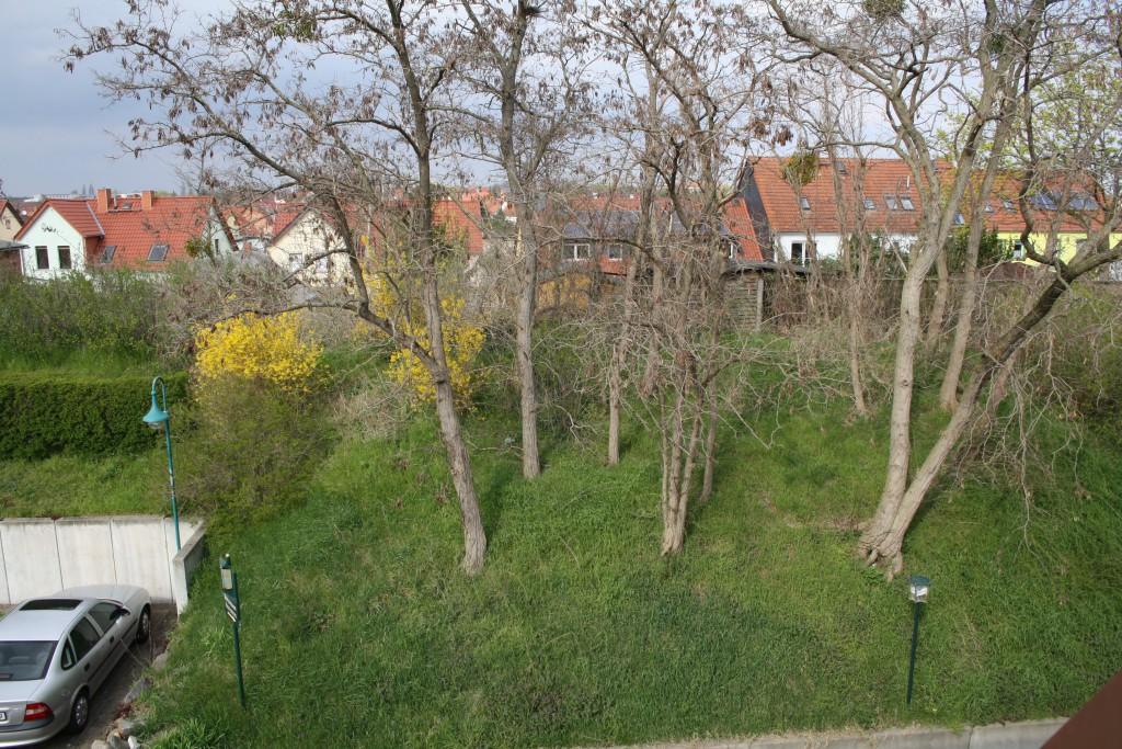 http://hotel-robinien-hof.de/wp-content/uploads/2016/04/IMG_8235-1024x683.jpg